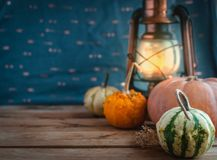 Mini pumpkins and lantern on wooden background, copy space stock photo