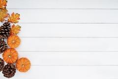 Mini Pumpkins och sörjer kottar över träbakgrund arkivbild
