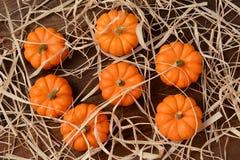 Mini Pumpkins och sugrör Royaltyfri Bild