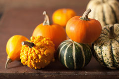 Mini pumpkins on wooden background Stock Images