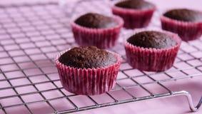 Mini queques do chocolate fotografia de stock royalty free