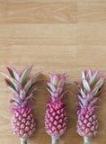 Mini Różowi ananasy Zdjęcie Royalty Free