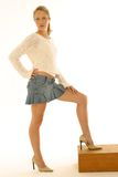 Mini retratos de la falda Foto de archivo