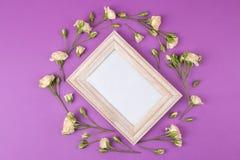 Mini rosas hermosas y un marco para una foto en un fondo brillante de la lila holidays Día del `s de la tarjeta del día de San Va fotografía de archivo libre de regalías