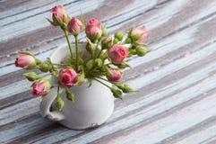 mini rosas rosadas Imagenes de archivo