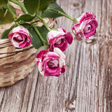 Mini roses on vintage wooden surface Royalty Free Stock Photos