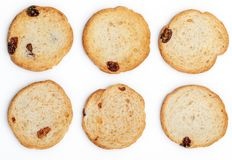 Mini round toasts of bread with raisins. 6 units. royalty free stock photos