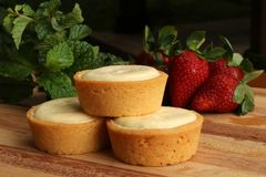 Mini Rounds of Cheesecake Stock Photography