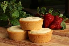 Mini Rounds do bolo de queijo Fotografia de Stock