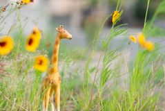 Miniature giraffe figurine in grass and yellow flowers like a mini safari. stock photography