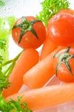 Mini Salade Stock Afbeelding