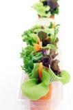 Mini salade Images stock
