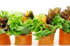 Mini salade Photos stock