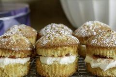 Mini Sandwich Cakes Lizenzfreie Stockbilder
