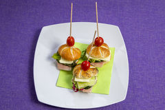 Mini sandwich set Royalty Free Stock Images