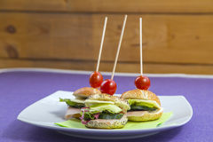 Mini sandwich set Royalty Free Stock Photo