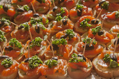 Mini-sandwiches die met een rode vis van koude roken Royalty-vrije Stock Foto