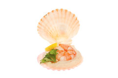 Mini seafood shell appetizer Stock Photo