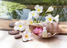 Mini set of bubble bath and shower gel decorated in sea conch sh Stock Image