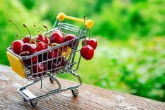 Mini shoppingcart avec les cerises mûres rouges Images libres de droits