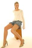 Mini skirt portraits Royalty Free Stock Image