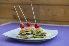 Mini- smörgåsuppsättning Arkivfoto