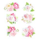 Mini spring mixed bouquets vector design set vector illustration