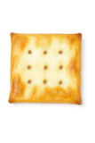 Mini square shape cracker Stock Photography