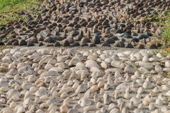 Mini stone dark and white half and half bury on the sand Stock Photo