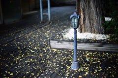 Mini streetlight royalty free stock photo