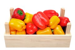Mini sweet bell peppers Royalty Free Stock Photo