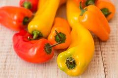 Mini Sweet Bell Peppers Close colorido para arriba desde arriba Imagen de archivo libre de regalías