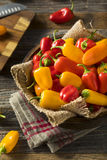 Mini Sweet Peppers orgánico crudo Foto de archivo