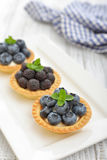 Mini tart with fresh berries Royalty Free Stock Image