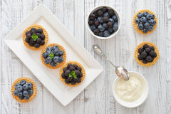 Mini tart with fresh berries Stock Image
