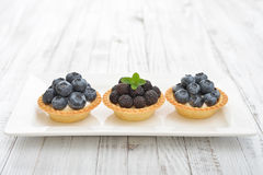 Mini tart with fresh blackberries Royalty Free Stock Photography