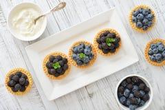 Mini tarta con las bayas frescas Fotografía de archivo