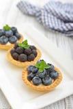 Mini tarta z świeżymi jagodami Obraz Royalty Free
