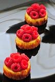Mini tartas del pastel de queso de la frambuesa foto de archivo libre de regalías
