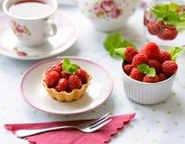 Mini tartes avec des fruits de framboises Images libres de droits