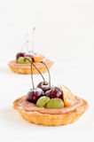 Mini tartlets de la fruta en el fondo blanco Foto de archivo libre de regalías
