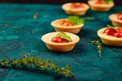 Mini tarts with cherry tomatoes. With mozzarella cheese on green background Royalty Free Stock Photos