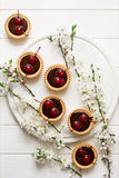 Mini tarts with chocolate and cherries decorated cherry blossom Stock Photos
