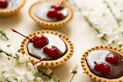 Mini tarts with chocolate and cherries decorated cherry blossom Royalty Free Stock Photography