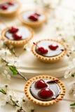 Mini tarts with chocolate and cherries decorated cherry blossom Stock Photo