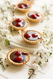 Mini tarts with chocolate and cherries decorated cherry blossom Royalty Free Stock Image
