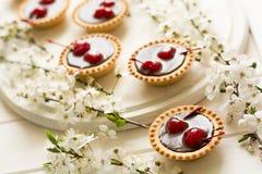 Mini tarts with chocolate and cherries decorated cherry blossom Stock Image