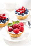 Mini tarts with cream and berries, vertical Royalty Free Stock Photography