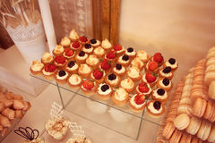 Mini tarts with cream and fruits Stock Image