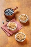 Mini Tarts rústico com Honeysuckle Curd Cream Imagem de Stock Royalty Free